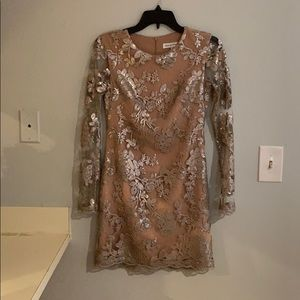 Dress the population Grace Silver Sequin Dress- XS